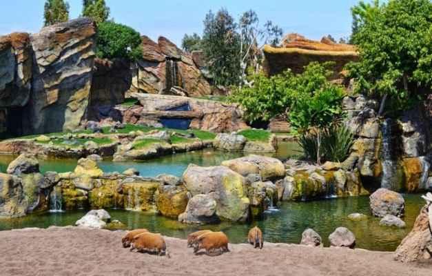 Сказочный Биопарк Валенсия