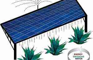 Агава и солнечные батареи